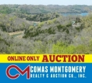 Real Estate - Center Hill Lake Lot