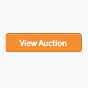 PERSONAL PROPERTY: Test Auction For Sales Tax