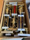 Collection of Trophies (10)