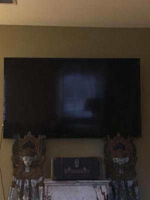 Majestic Television with Mount
