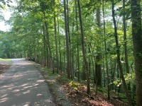 REAL ESTATE: SELLING ABSOLUTE! Vacant Lot in Four Seasons Resort - Lot #533 - April Drive, Smithville, TN - 6