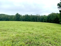 REAL ESTATE: Oscar Green Rd, Primm Springs, TN - 8