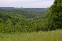 LOT 4: NOW SELLING ABSOLUTE!!! Coconut Ridge Road, Smithville, Tennessee