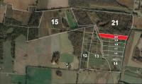 FARM #2 Gum Creek Road/Prairie Chapel Road - TRACT #20: Hammer Price x 5.14+/- ACRES