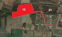 FARM #2 Gum Creek Road/Prairie Chapel Road - TRACT #15: Hammer Price x 65.04+/- ACRES